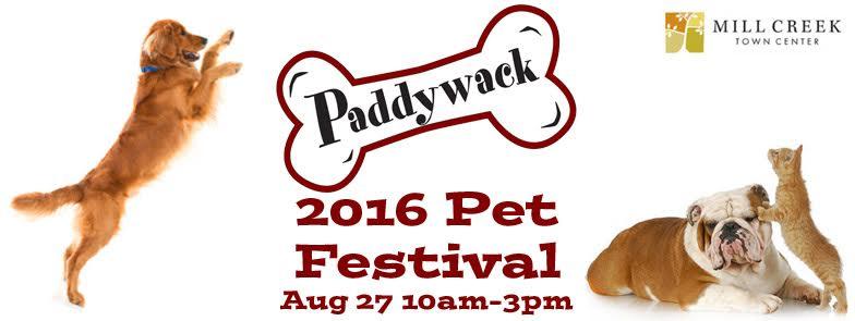 Pet Festival Banner