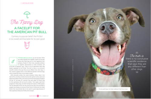 Press - Pinups for Pitbulls